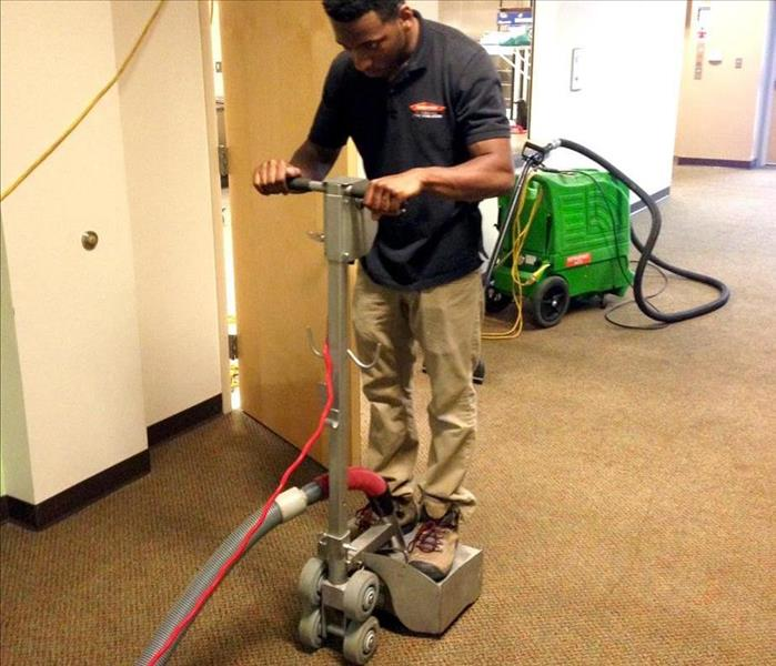 Carpet Cleaning in Action
