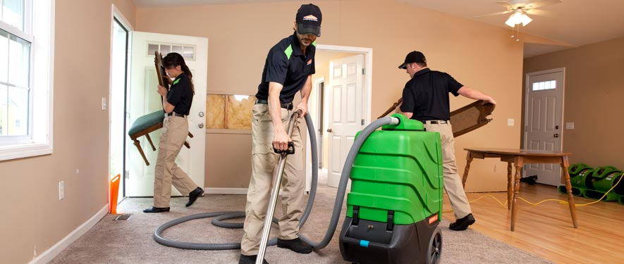 Edison, NJ cleaning services